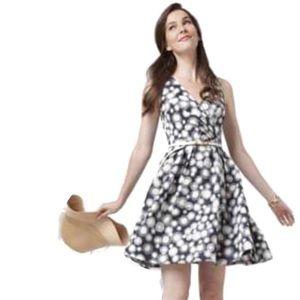 Blaise Kavanagh Fit & Flare Taffeta Dress